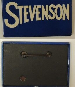 Stevenson Rectangle Blue Campaign Button