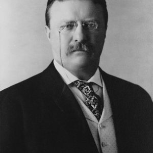Theodore Roosevelt Professional Photo Print - Presidential Election