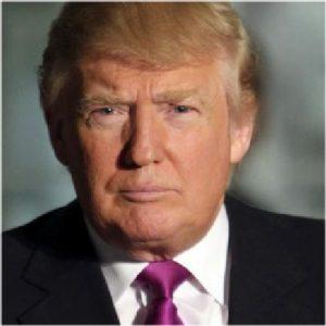 2016 Donald Trump Stickers